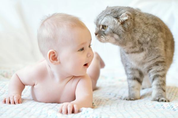 Menjaga Bayi Anda Aman – Hidup Dengan Hewan Peliharaan