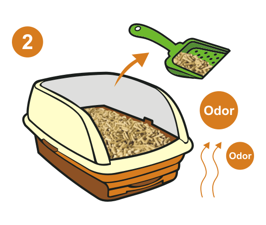 How to use cat litter 2