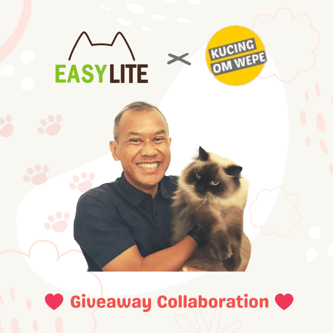 Giveaway Collaboration Dengan Kucing Om Wepe